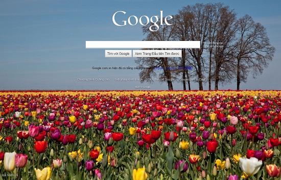 cach-lam-cho-google-yeu-thich-trang-web-cua-ban