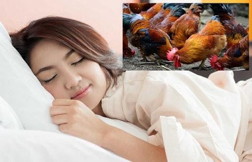 Mơ thấy con gà đánh đề con gì
